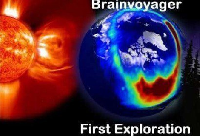 Video First Exploration by Brainvoyager