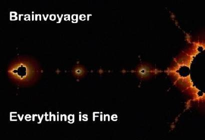 Video Everything Is Fine by Brainvoyager