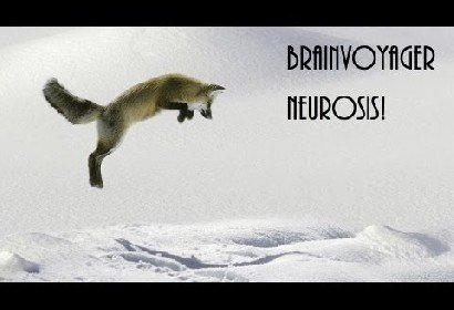 Video Neurosis! by Brainvoyager