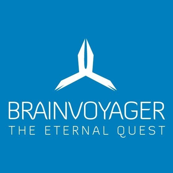 Electronic music of Brainvoyager - The Eternal Quest