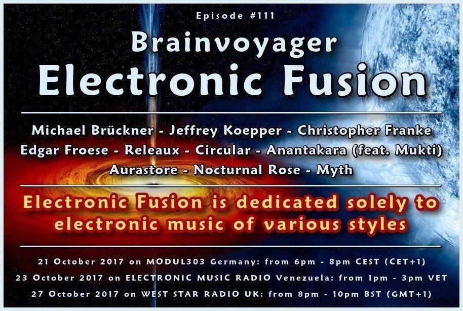 Banner Electronic Fusion E111