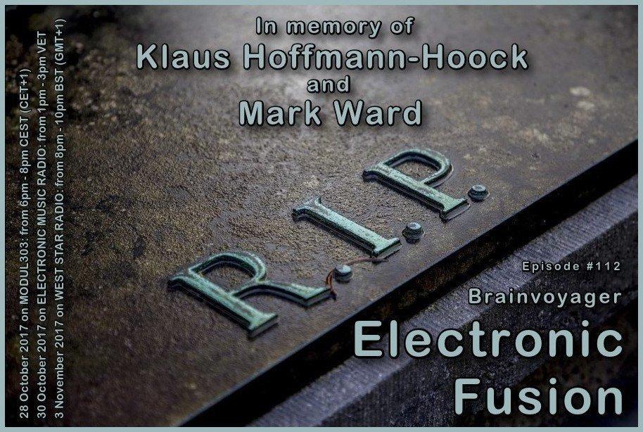 Banner Electronic Fusion E112
