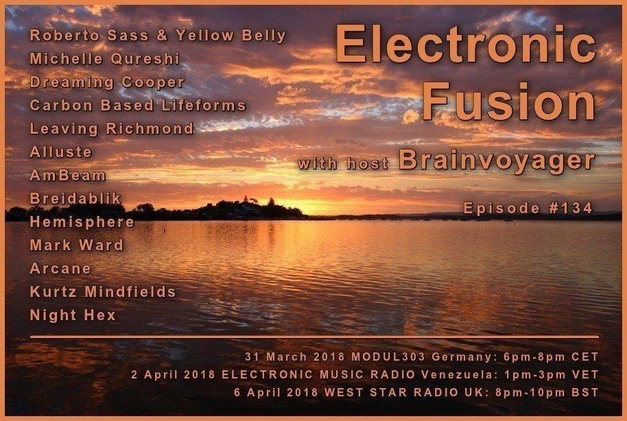 Banner Electronic Fusion E134