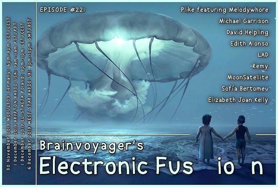 Banner Electronic Fusion E221