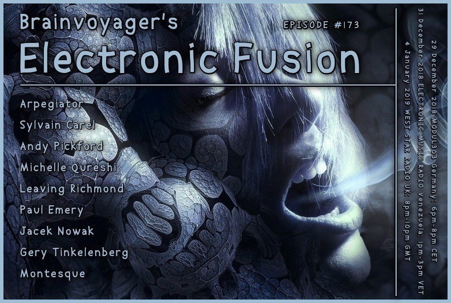 Banner Electronic Fusion E173