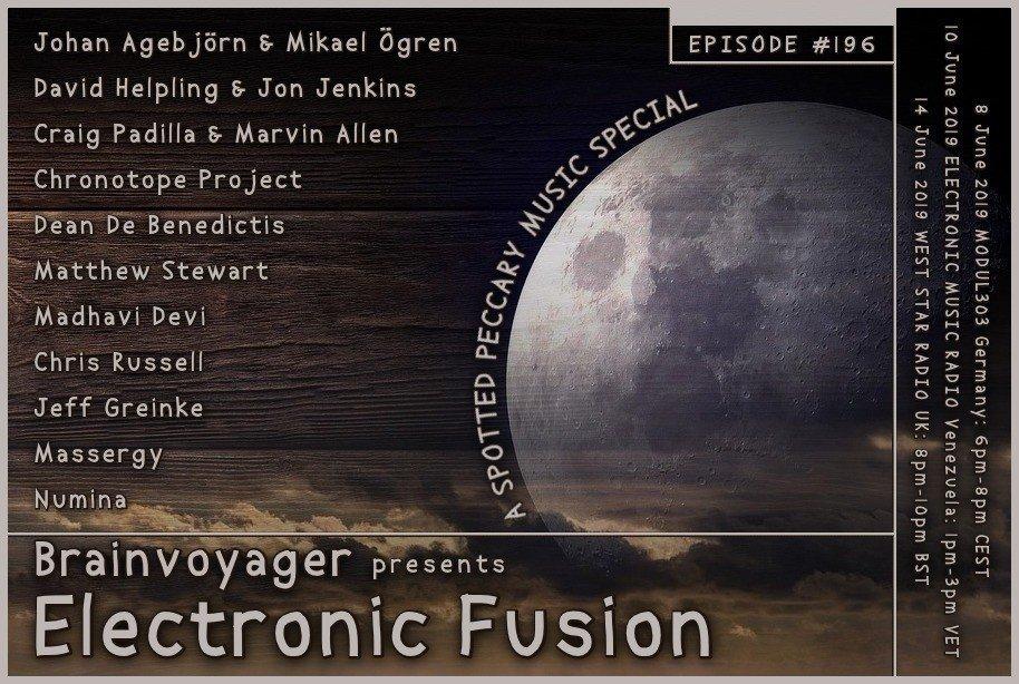Banner Electronic Fusion E196