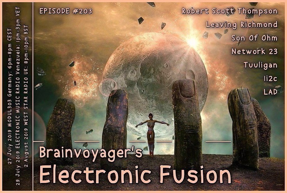 Banner Electronic Fusion E203