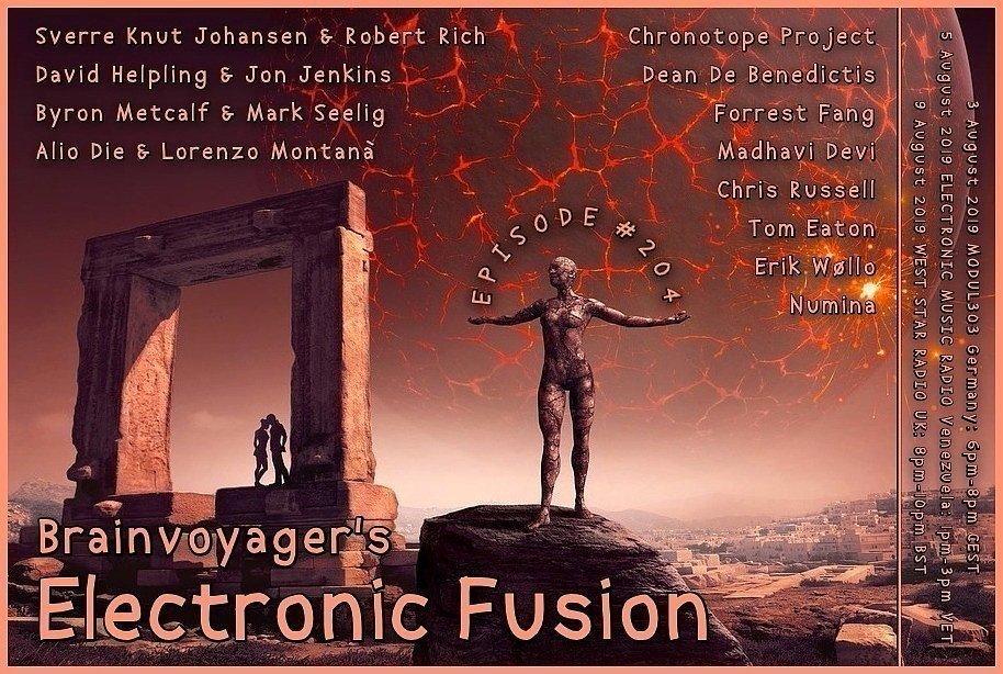 Banner Electronic Fusion E204