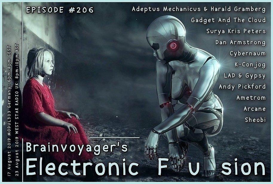 Banner Electronic Fusion E206