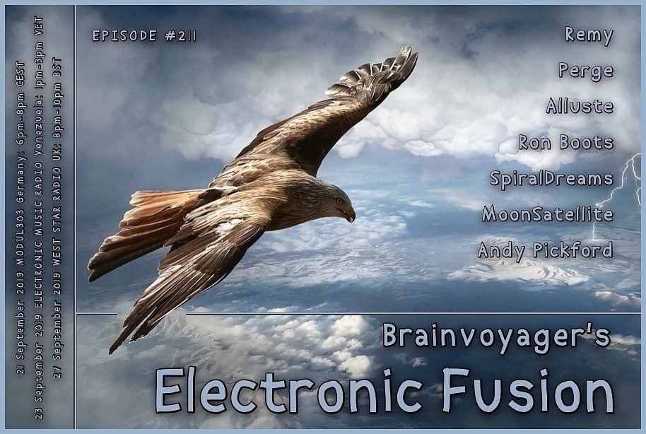 Banner Electronic Fusion E211
