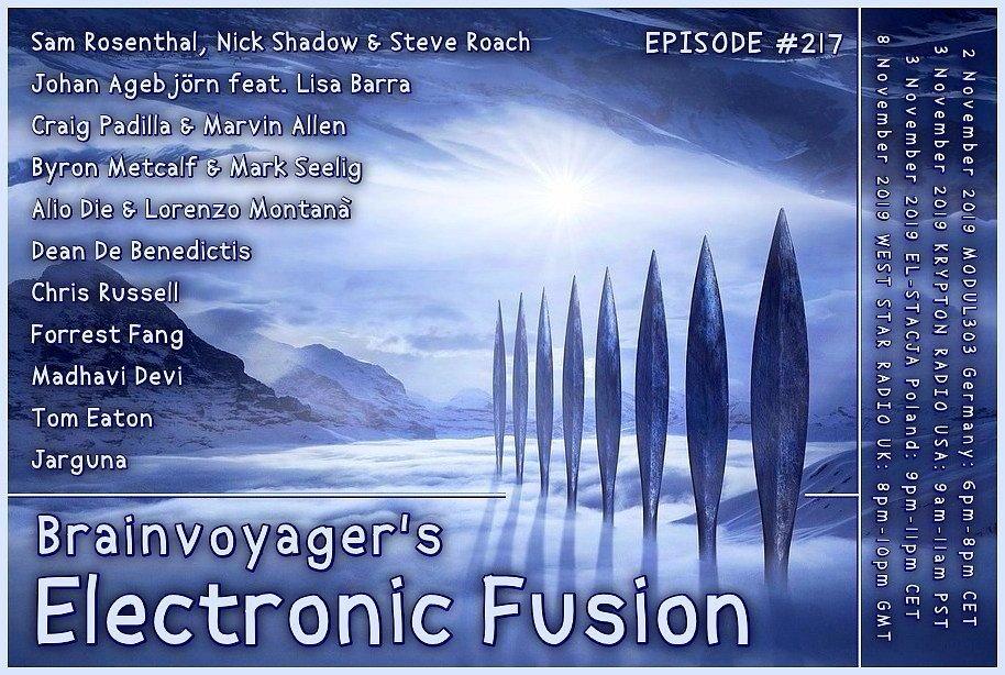 Banner Electronic Fusion E217