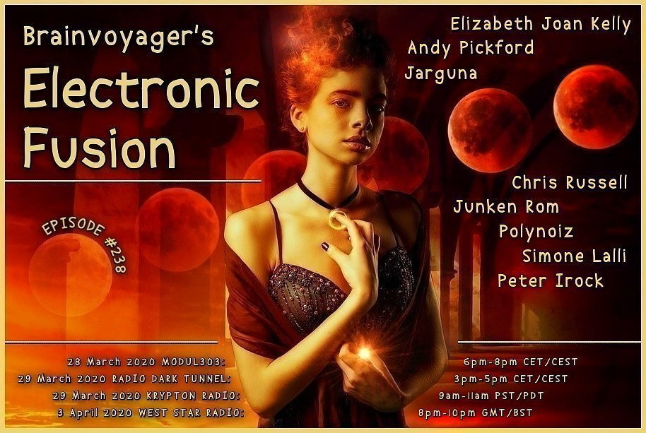 Banner Electronic Fusion E238