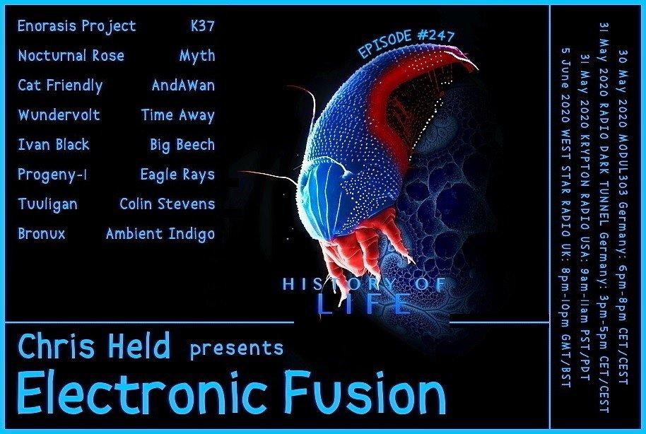 Banner Electronic Fusion E247