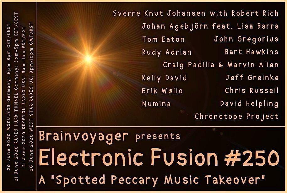 Banner Electronic Fusion E250