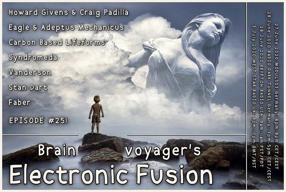 Banner Electronic Fusion E251