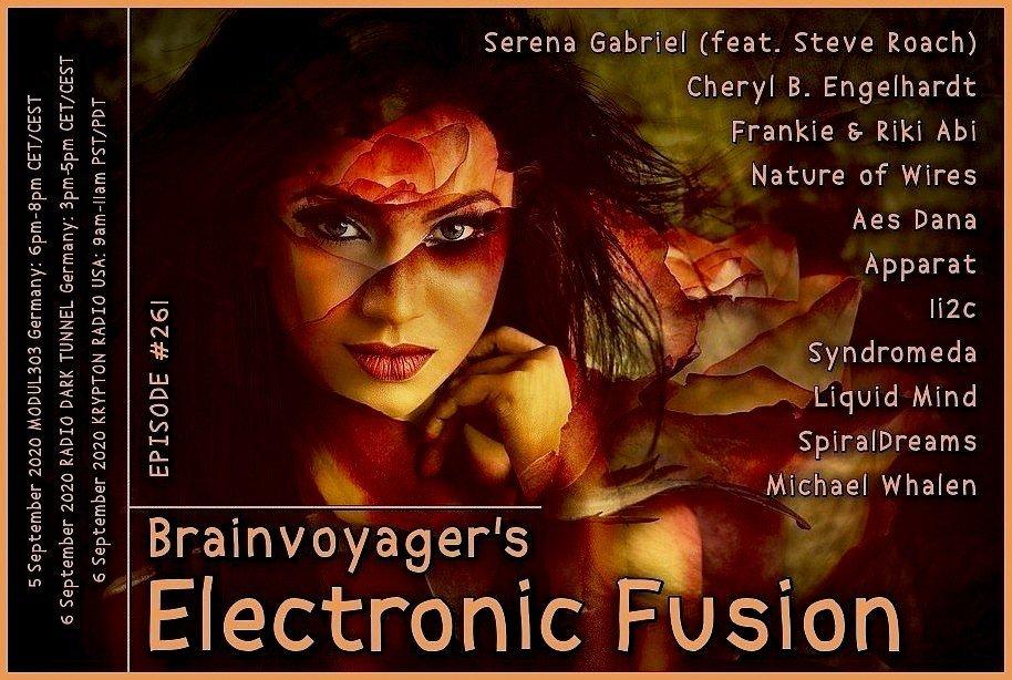 Banner Electronic Fusion E261