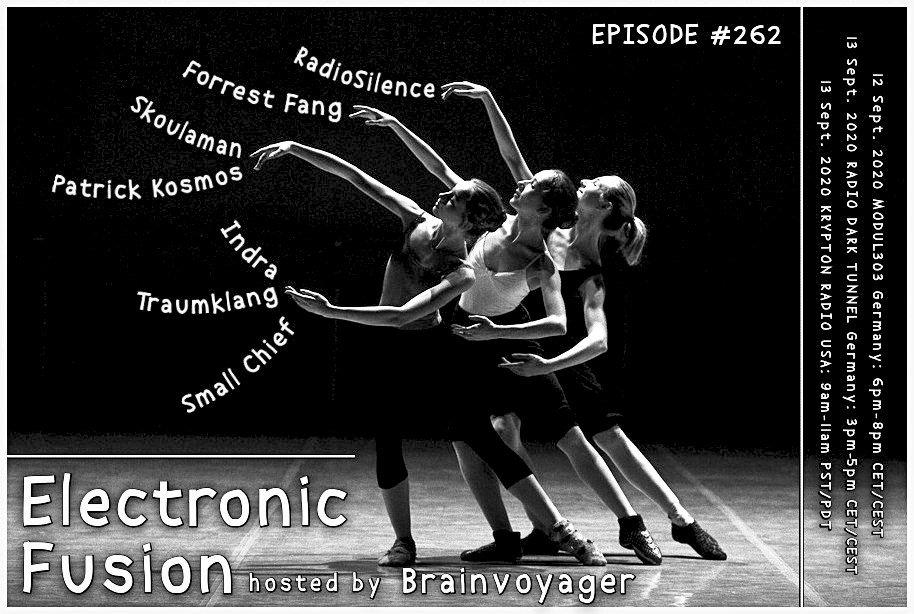 Banner Electronic Fusion E262