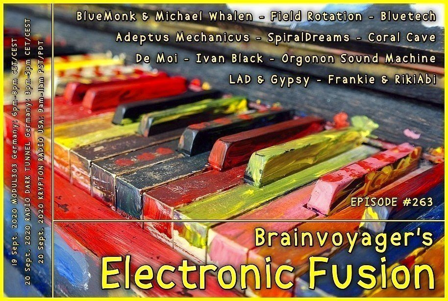 Banner Electronic Fusion E263