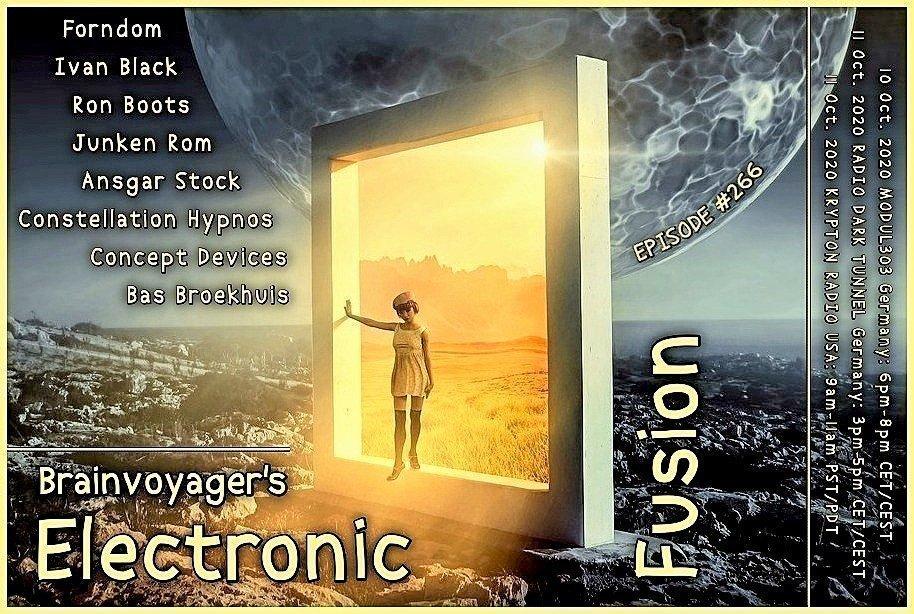 Banner Electronic Fusion E266