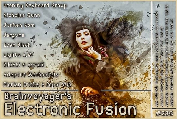 Banner Electronic Fusion E286