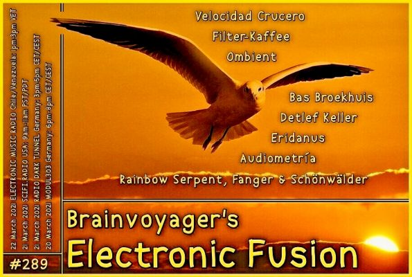 Banner Electronic Fusion E289