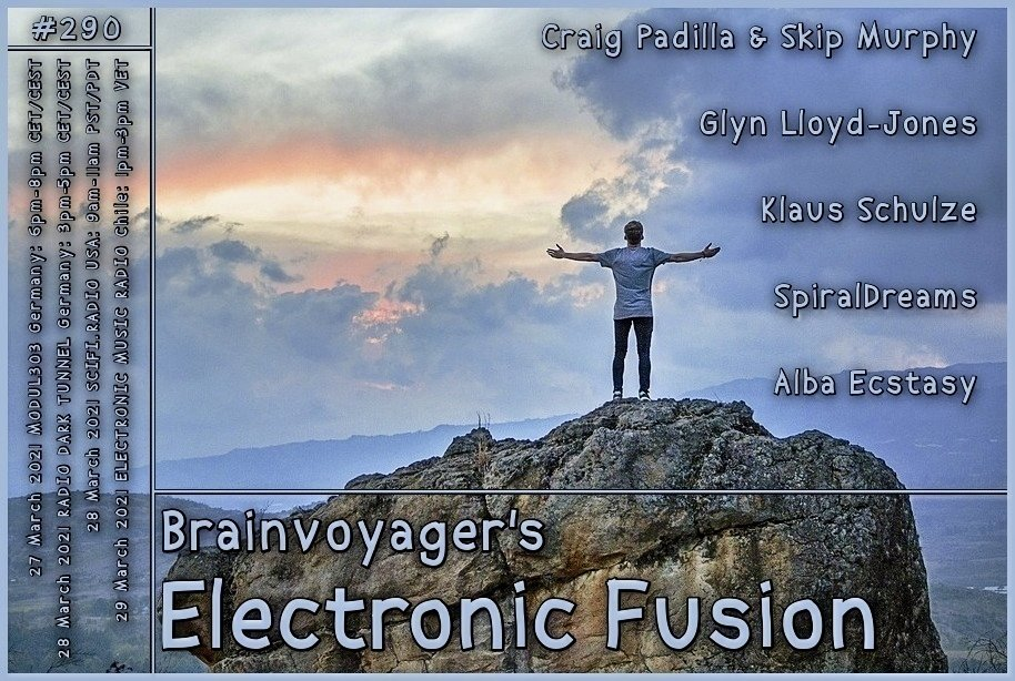 Banner Electronic Fusion E290
