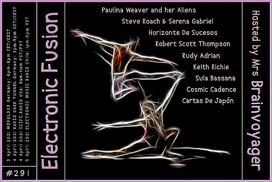Banner Electronic Fusion E291