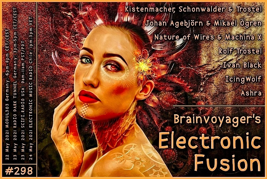 Banner Electronic Fusion E298