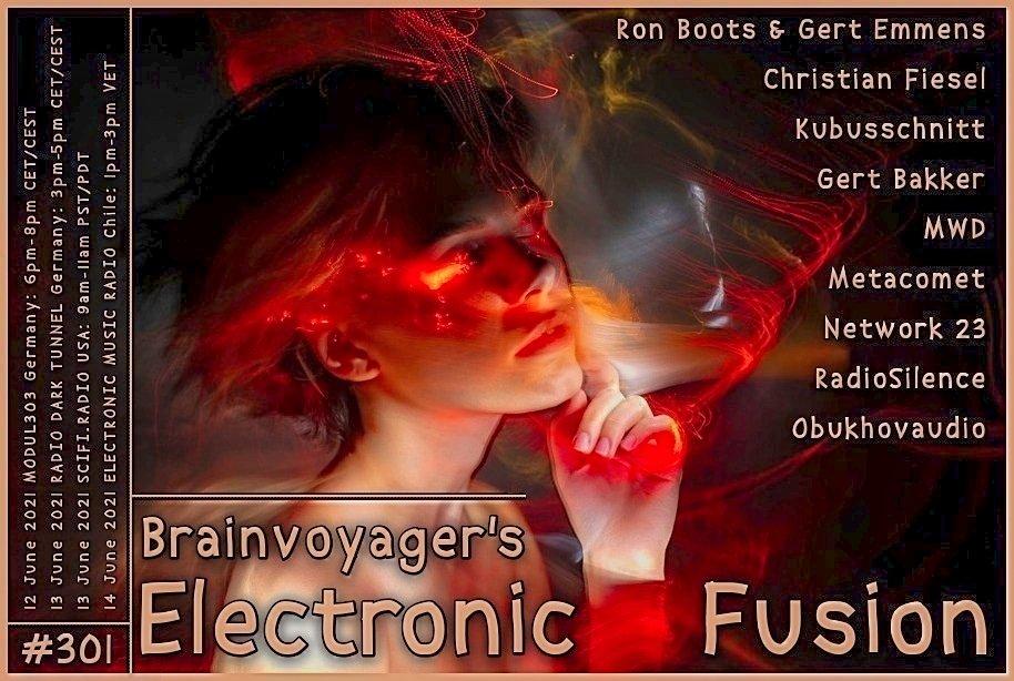 Banner Electronic Fusion E301