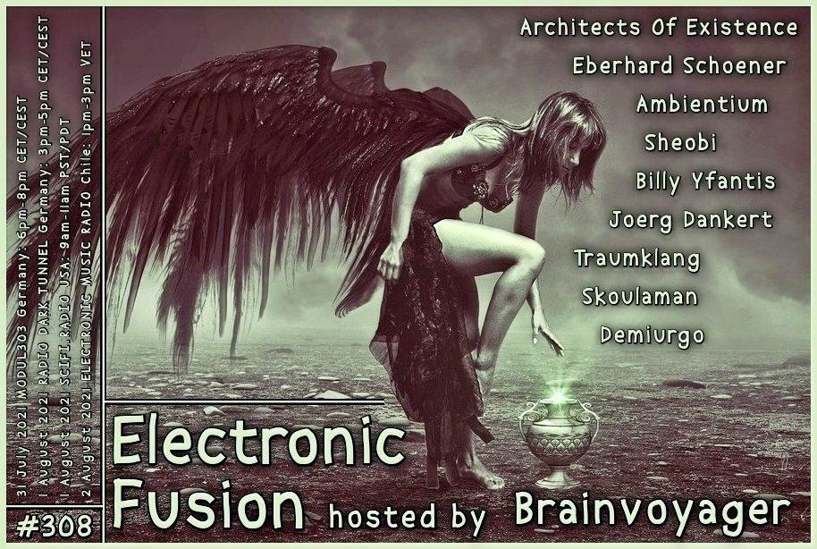 Banner Electronic Fusion E308