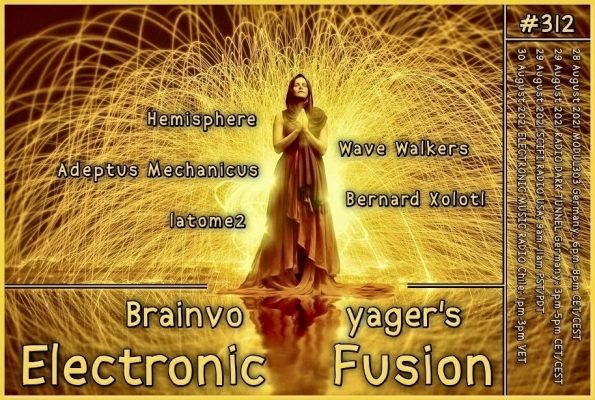 Banner Electronic Fusion E312