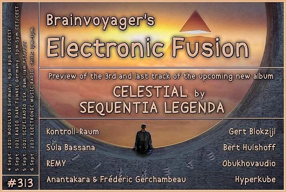 Banner Electronic Fusion E313