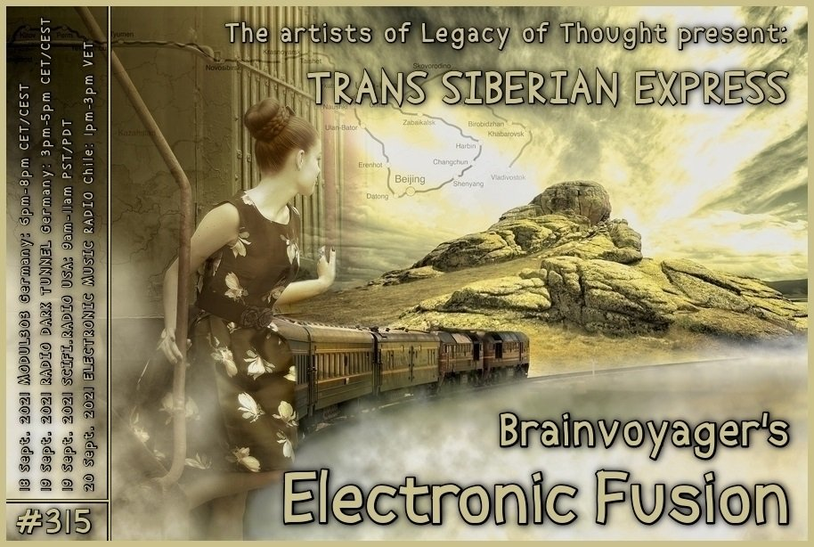 Banner Electronic Fusion E315