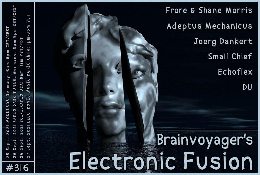 Banner Electronic Fusion E316