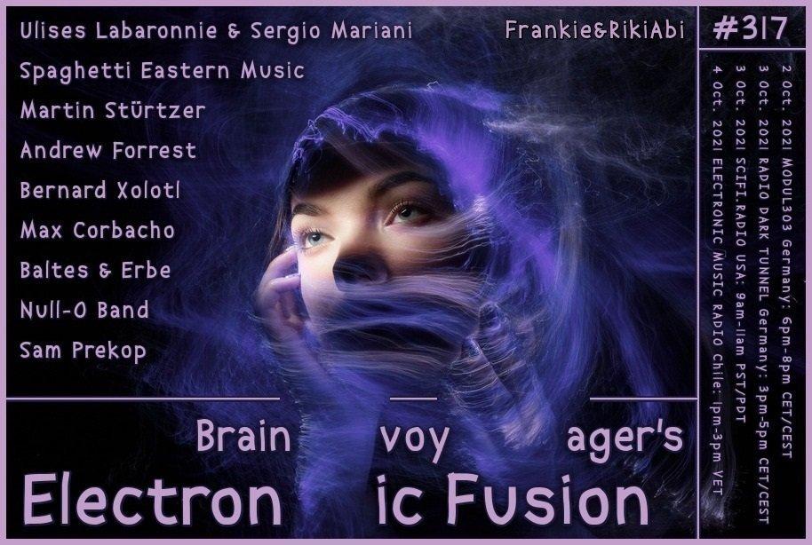 Banner Electronic Fusion E317