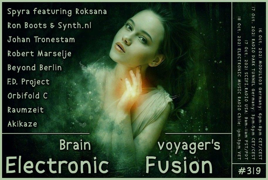 Banner Electronic Fusion E319