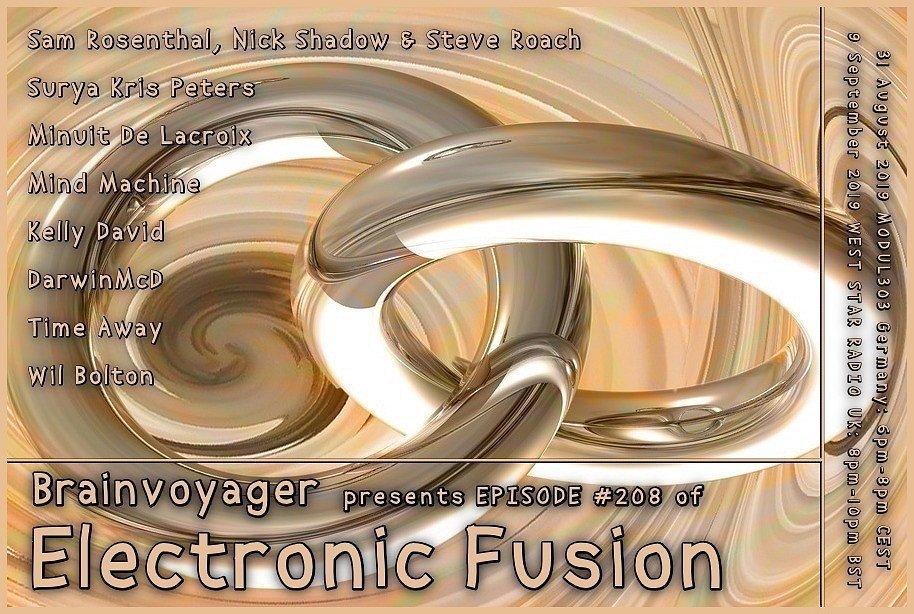 Banner Electronic Fusion E208