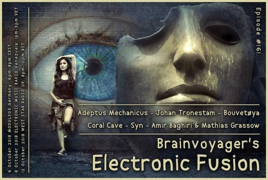 Banner Electronic Fusion E161