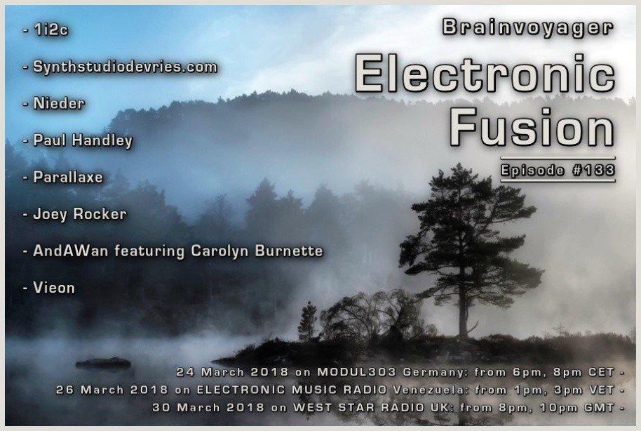 Banner Electronic Fusion E133